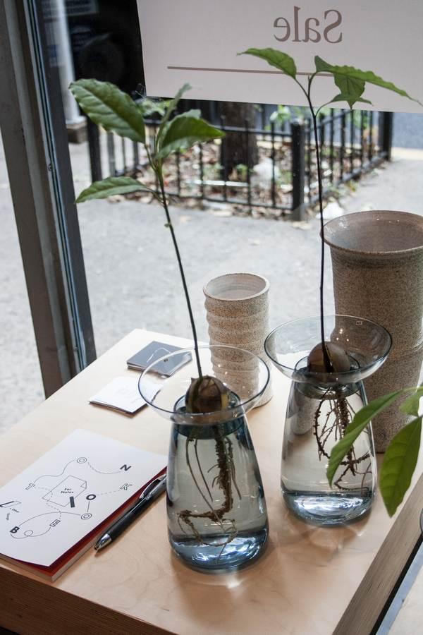 NY Design guide_Still house